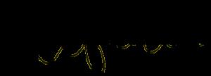 stefania rastellino design